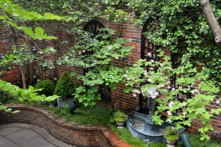 Shady summer courtyard wisteria rose for Small shady courtyard ideas
